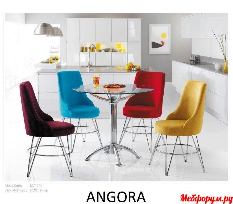 ANGORA.jpg